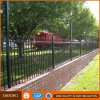Residential Wrought Iron Fence and Gates