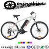 Fashionable Electric Bikes with Central Motor (QXE07Z)