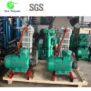Sulfur Dioxide 691 Model Industrial Gas Compressor