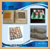Reciprocating Resycle System Used Paper Egg Tray Machine