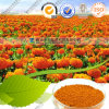 Zeaxanthin Powder 5% Lutein 90% HPLC