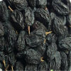 High Quality Seedless Blackcurrant Raisins for Sale