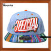 Fashion Design Custom Flat Brim Snapback Hats (DSS101)