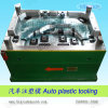 Auto/Automobile/Plastic Mould (HRD-H69)