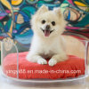 Newest Acrylic Pet Bed Shenzhen Manufacturer