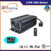 315watt CMH Grow Light Hydroponc Kits Better Effect Than LED Grow Light