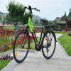 Lady 700c 250W Central Middle MID Motor City Electric Bike