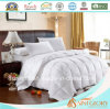 2017 White Duck Down Comforter Goose Feather and Down Quilt