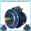 Mechanical Speed Variator with Variable Ratio Gear Box