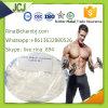 Methyltestosteron 17-Alpha-Methyl-Testosterone CAS 65-04-3 Bodybuilding Protein