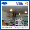 Refrigerated Cold Storage Freezing System