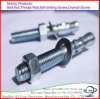 High Quality Stainless Steel Wedge Anchor Bolt