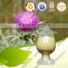 High Quality Silymarin Silymarin Milk Thistle Herb Solvent Extractor