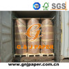 Virgin Wood Pulp NCR Carbonless Paper in Roll Stock