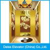 Ti-Plated Indoor Villa Home Residential Passenger Lift Mrl