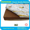 Kid Coir Mattress