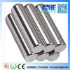 N48 D6.35X25.4 Cylinders Neodymium Magnet