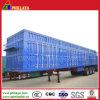 30 Tonnage Light Cargo Transporting Van Semi Trailer for Logistics