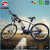 Electric Mountain E Bike MID Motor MTB Bicicleta