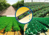 Agriculture Flat Drip Irrigation Pipe