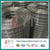 Welded Wire Mesh Roll/ PVC Coated Welded Wire Mesh Rolls