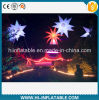 Christmas Outdoor Decoration LED Lighting Inflatable Stars with Customized Size for Sale