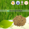 100% Pure Natural Herb Medicine Fructus Oryzae Germinatus
