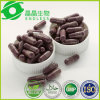 Green Acai Berry Powder Botanical Slimming Capsule