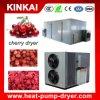 Fruit Drying Machine/ Pineapple/ Apple/ Mango Dehydrator Equipment
