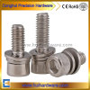 Stainless Steel Allen Head Sems Screw/Bolt with Washers