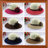 Large Brim Beach Straw Hat (LT130615G)