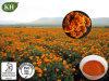 Kingherbs′ 100% Natural Marigold Extract: Lutein 5%, 10%, 20%, 80%, 90% (UV, HPLC) ; Zeaxanthin 2%~50%.