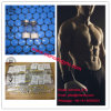 Hg Peptides 2mg Peg Mgf for Muscel Remaining