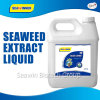 Seaweed Extract Organic Fertilizer Liquid