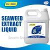 Seaweed Extract Organic Fertilizer Liquid
