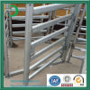 Galvanized Cattle Panels on Sale