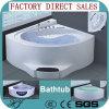 Luxury Bathroom Sanitary Ware Whirlpool Bathtub (5203B)