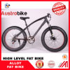 Wholesale Cheap Price Fatbike, Fat Bike Cheap Price, 26 Inch Snow Bike Carbon Fat Bike Frame