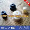 Nylon POM Delrin Plastic Wheel Gear