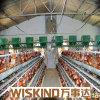 Easy Assemble Steel Structure Poultry House