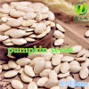 Chinese Shine Skin Pumpkin Seeds for Sale with Good Quality