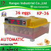 CE Approved Small 36 Eggs Incubator for Chicken