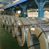 Galvanized Steel Coil for Construction