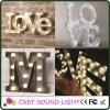 3D LED Letter/Number Advertising Sign Lights