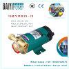 Family Samll Water Booster Pump Circulation Pump