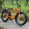 OEM Aluminium Alloy Fat Tire Sports Ebike with Ce En15194