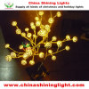 CE UL SAA BS Standard LED Christmas Light