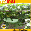 100% Vingin HDPE Knitting Anti-Bird Protection UV Stablised Plastic Net