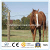Cheap Fencing Mesh/ Animal Fence