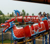 Exciting Amusement Equipment Train Dragon Roller Coaster